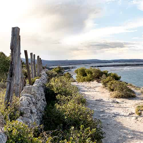 Camping Aude - Nature